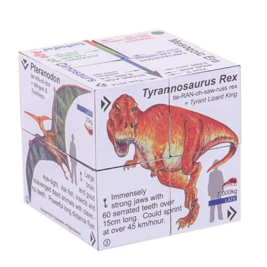 Dinosaurs Cube book